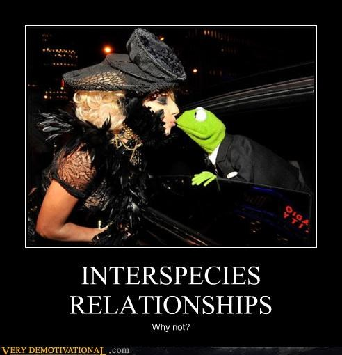 INTERSPECIES RELATIONSHIPS Why not?