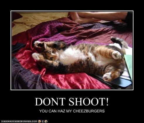 DONT SHOOT! YOU CAN HAZ MY CHEEZBURGERS