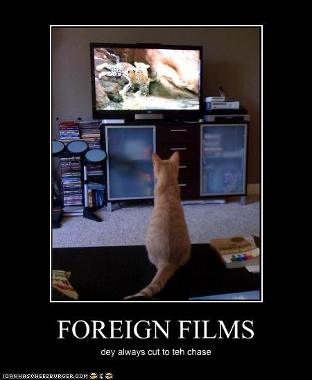 FOREIGN FILMS dey always cut to teh chase