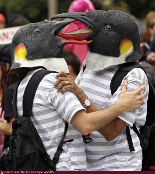 making out masks penguin performance wtf - 3679805696