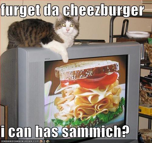 Cheezburger Image 3680564736