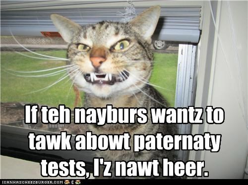caption,captioned,cat,excuse,fyi,guilty,neighbors,not here,paternity test,problem,talk,test,want