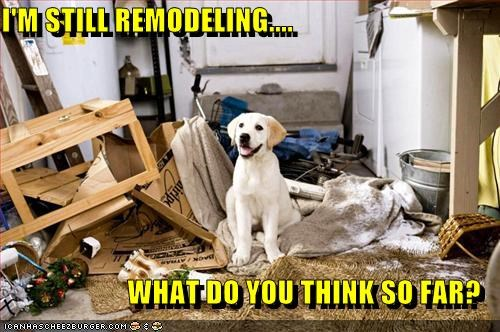 mess puppy - 3681866240