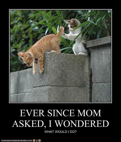 EVER SINCE MOM ASKED, I WONDERED