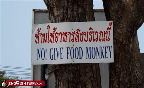 food monkey sign Unknown wtf - 3687260160