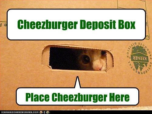 box cheezburger Hall of Fame plotting want - 3691304192