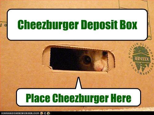 box cheezburger Hall of Fame plotting want - 3691304192