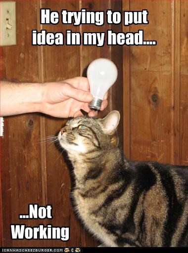 do not want Hall of Fame idea light bulb - 3691320320