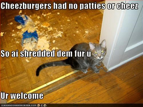 Cheezburger Image 3695850752