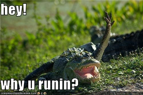 alligator Hey lolalligator run wave - 3696732416