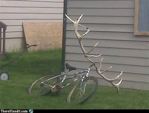 antler,bicycle,bike,recycling-is-good-right,Rocky and Bulwinkle,wait wut