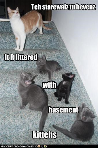 heaven lolcats sarcasm stairs - 3697375232