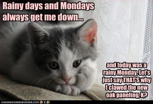 caption,captioned,cat,clawed,days,down,explanation,kitten,mondays,new,oak,panelling,rainy,reason,Sad