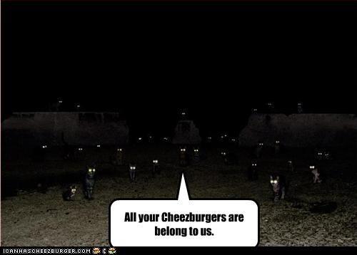 Cheezburger Image 3703393792