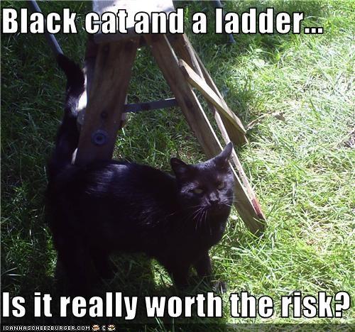 bad luck ladder - 3703710976