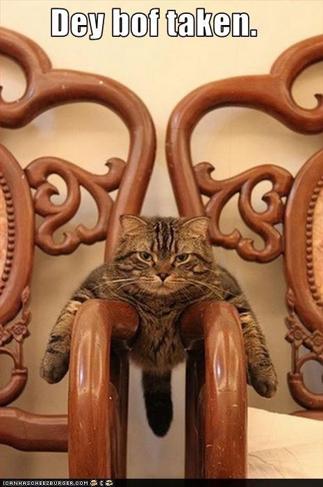 caption chair greedy - 3703867648