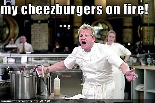 Cheezburger Image 3705681152
