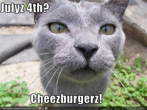 Cheezburger Image 3706471424