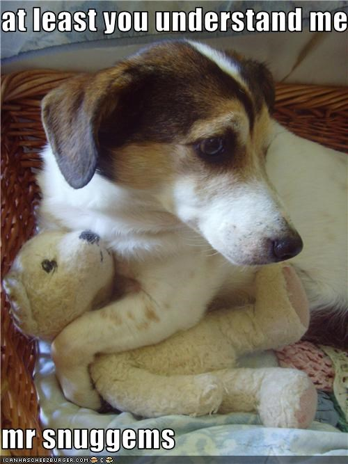 Hall of Fame jack russell terrier stuffed toy teddy bear - 3711454976