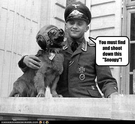animals,funny,Photo,photograph,soldier,war,WWII