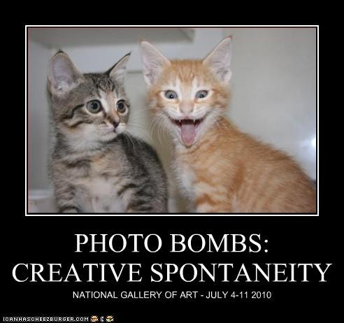 PHOTO BOMBS: CREATIVE SPONTANEITY NATIONAL GALLERY OF ART - JULY 4-11 2010