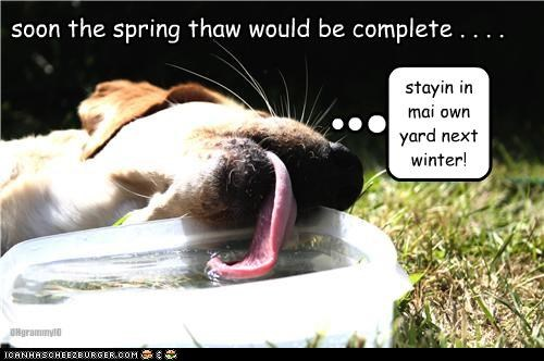 soon the spring thaw would be complete . . . . OHgrammyIO stayin in mai own yard next winter!