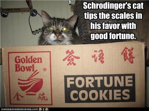 Cheezburger Image 3719599104