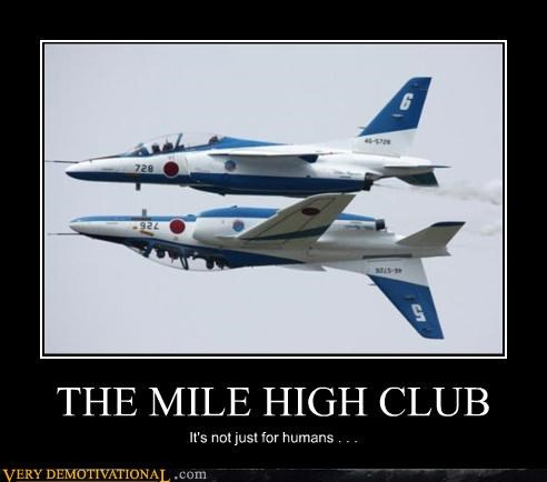 THE MILE HIGH CLUB It's not just for humans . . .