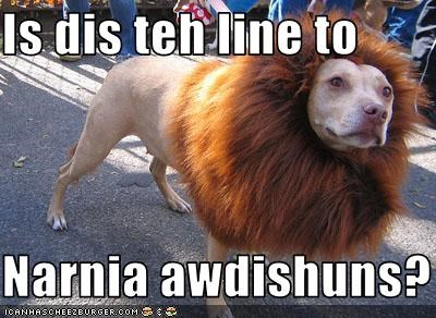 dogs lion narnia pitbull