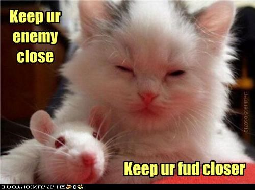 adage,caption,captioned,cat,close,closer,cuddling,enemy,food,friend,kitten,rat,saying