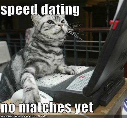 speed dating no matches