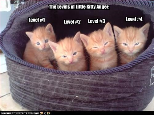 The Levels of Little Kitty Anger: Level #1 Level #2 Level #3 Level #4