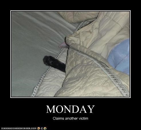 bed,kill,mondays,victim