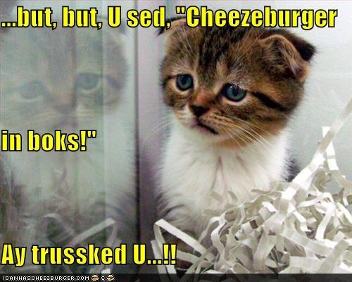 Cheezburger Image 3725058816