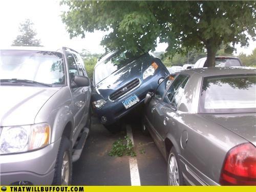 My Subaru Can Go Anywhere! - Cheezburger - Funny Memes