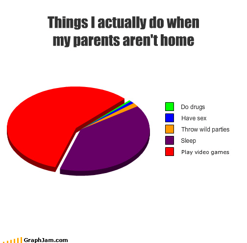 Home Alone Pie Chart teenagers video games - 3726780160