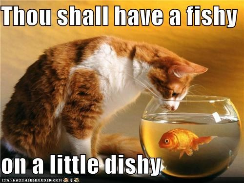 Thou shalt have a fishy advert