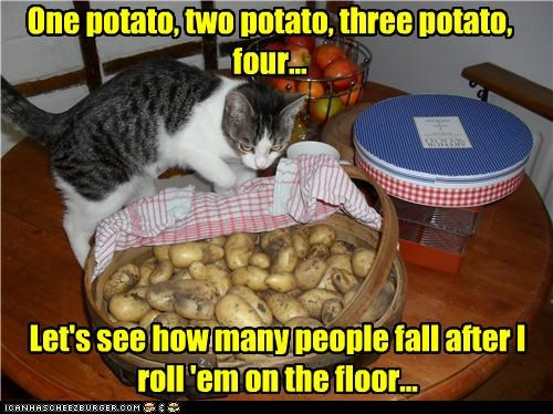 oy One potato, two potato, three potato, four... Let's see how many people fall after I roll 'em on the floor...