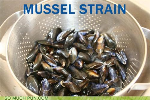 exercise food kitchen mussels puns strainer