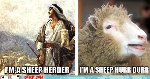 derp herder profession puntastic sheep - 3731718912