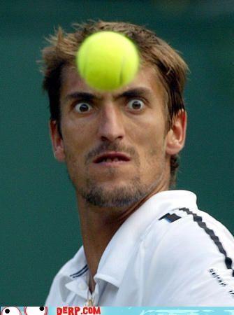 face Sportderps tennis tennis ball - 3731754752