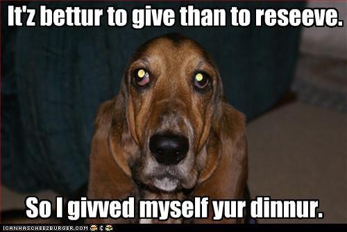basset hound dinner - 3736389376