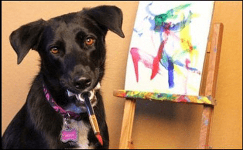 a dog that paints