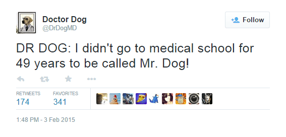 dr dog md,dogs,twitter,dr dog,parody accounts