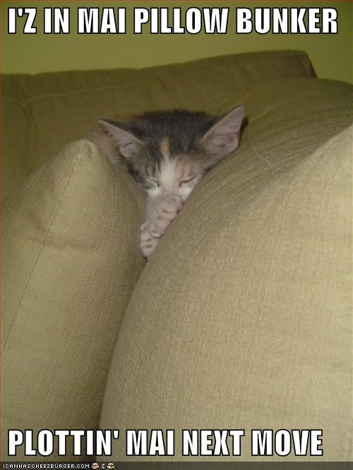 after before bunker caption captioned cat couch im-in-your kitten meme move next Pillow plotting - 3737665280