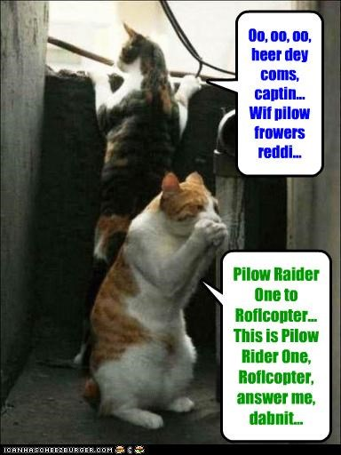 Pilow Raider One to Roflcopter... This is Pilow Rider One, Roflcopter, answer me, dabnit... Oo, oo, oo, heer dey coms, captin... Wif pilow frowers reddi...