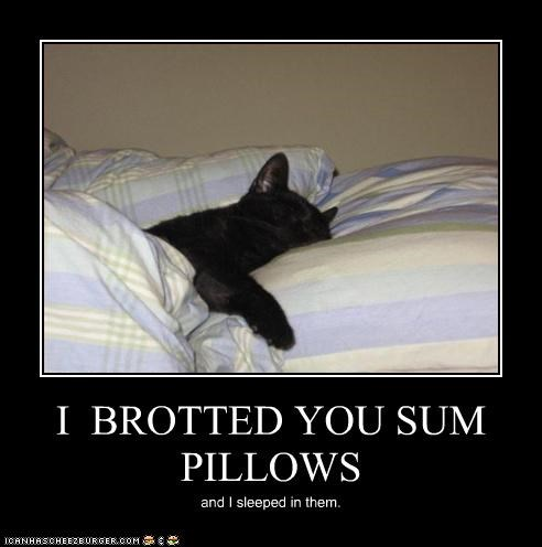 I  BROTTED YOU SUM PILLOWS
