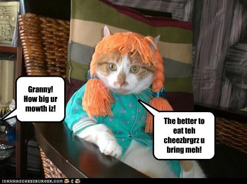 Cheezburger Image 3738259712