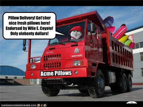 Acme Pillows