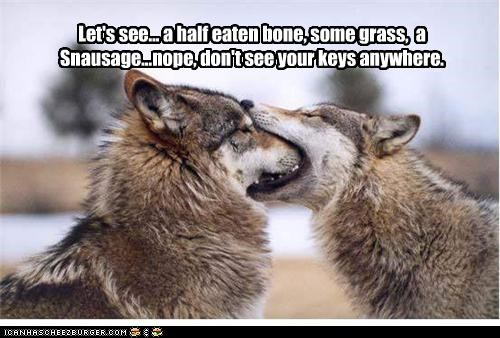 bone,lost keys,noms,snausage,wolves